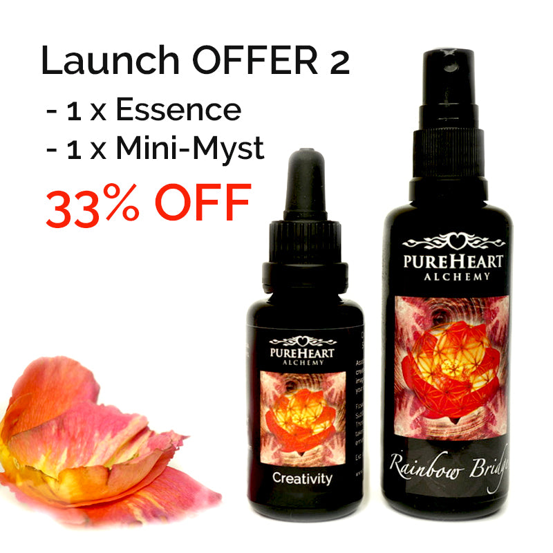 SPECIAL LAUNCH OFFER - Creativity Kit