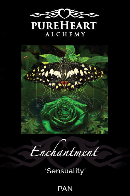 Enchantment ~ Engaging with the Sacred Language of Nature