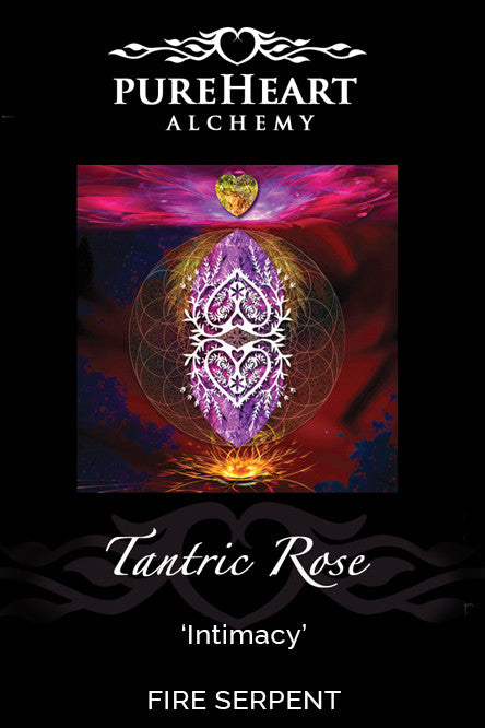 Tantric Rose ~ Merging our Sacred Sanctum with Purity