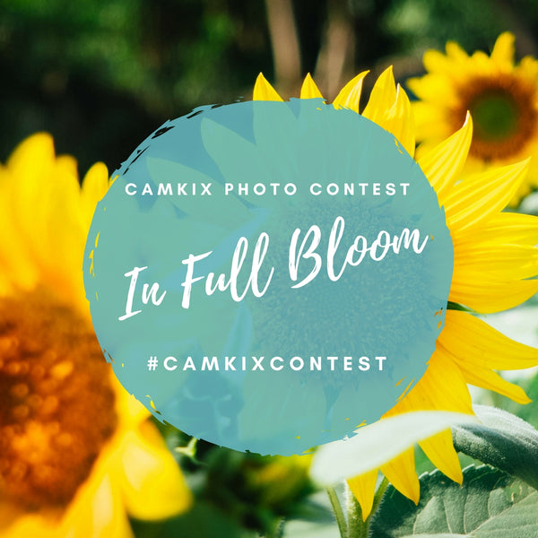 Instagram Photo Contest Theme for May: In Full Bloom