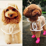 Transparent Dog Raincoat - LIMITED TIME OFFER.