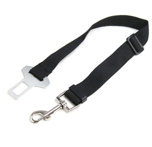 FREE Dog Seat Belt - Limited Time Only!
