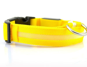 LED Dog Collar - Night Time Safety (50% OFF)
