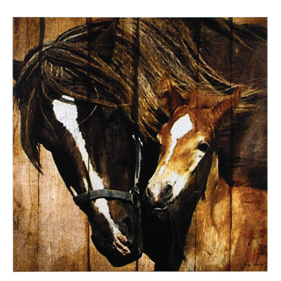 Mare & Foal Canvas