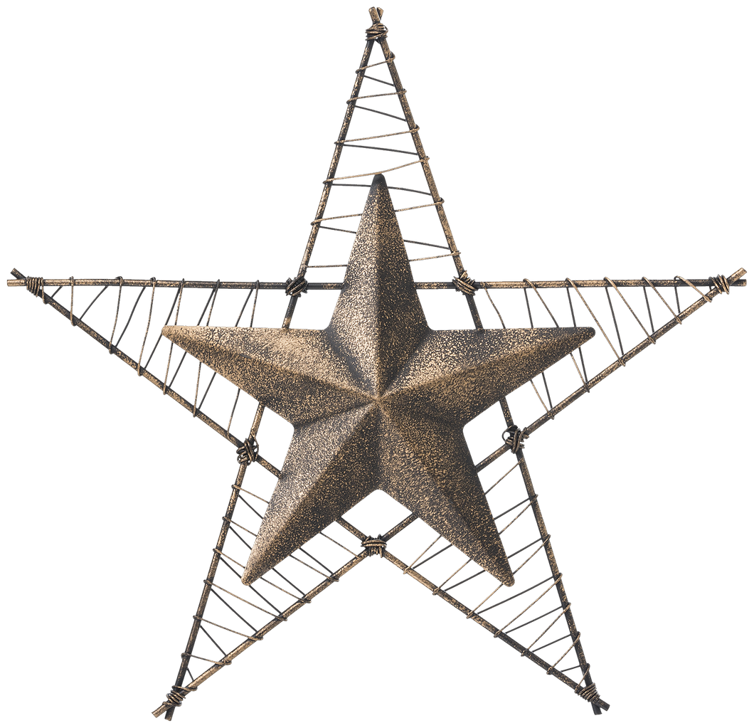 Metal Wire Wrapped Wall Star - 2 Colors Available