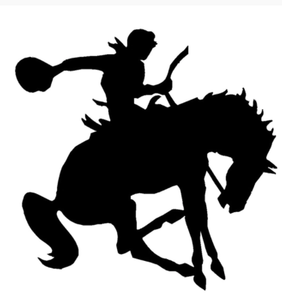 Bronc Buster Car Decal