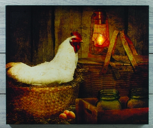 Lighted Chicken Canvas Art