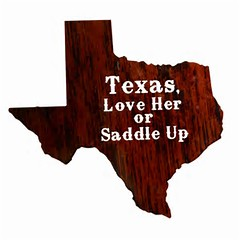 """Texas, Love Her or Saddle Up"" Western Laser-Cut Metal Wall Art"