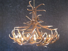 Load image into Gallery viewer, (CHD-E12) Elk 12 Antler Chandelier