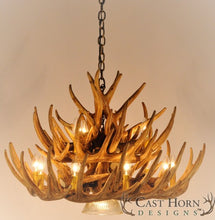 Load image into Gallery viewer, (CHD-W21CDL) Whitetail Deer 21 Antler Cascade Chandelier with Downlight
