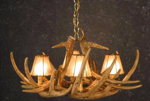 (CHD-W6SH) Whitetail Deer 6 Antler Chandelier with Rawhide Shades