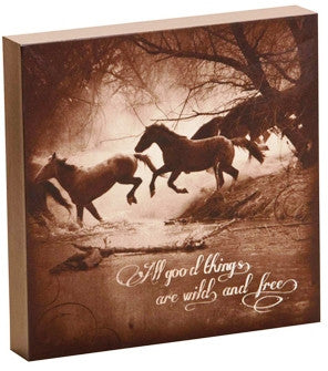 "(DM-B5210056) ""All Good Things Are Wild and Free"" Western Shadow Box Art"