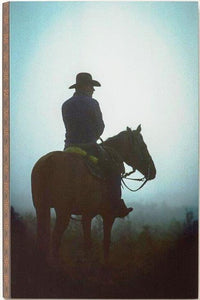 "(DM3005210290) ""Lone Rider"" Wall Art"