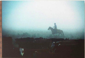 "(DM3005210291) ""Misty Morning"" Western Art"