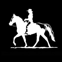 "(MBDV8170) ""Cowgirl - Gaited Horse"" High Performance Vinyl Decal"