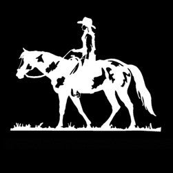 "(MBDV8175) ""Cowgirl - Paint Horse"" High Performance Vinyl Decal"