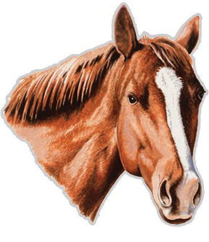 (RE206) Chestnut Horse Auto Magnet