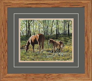 """Tagging Along"" Horses Small Framed Art Print"