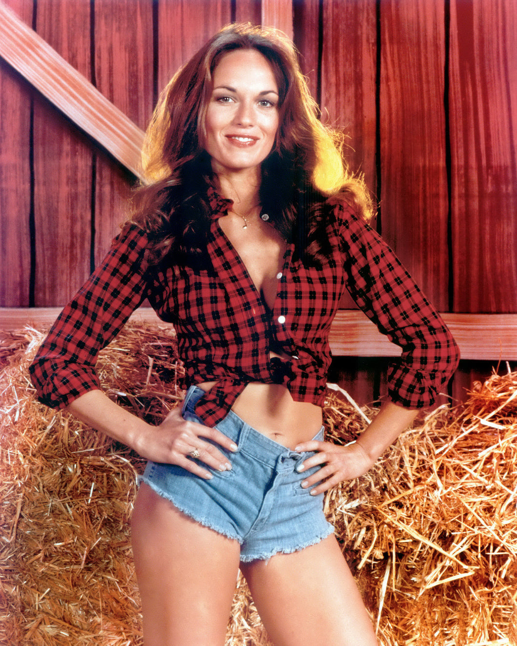 Personalized Signed Photo: Iconic Daisy in the Barn