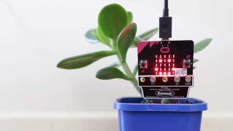 Use Python to calibrate your Kitronik Prong Moisture Sensor