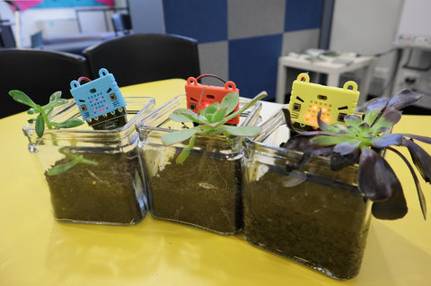 Kitronik prong soil moisture sensors for the BBC micro:bit