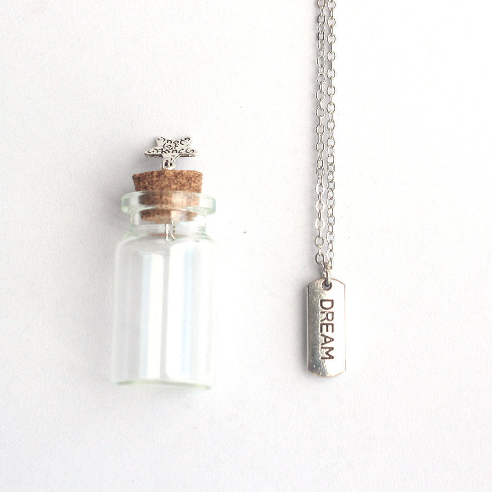 Dream mantra charm silver necklace in a tiny bottle