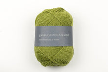 4 Ply by gwlan Cambrian Wool