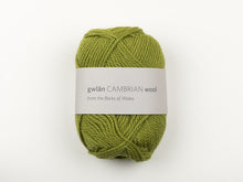 Double Knitting by gwlan Cambrian Wool