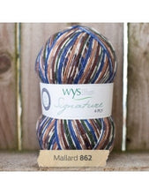 Signature 4 ply Birds & Cocktails by West Yorkshire Spinners