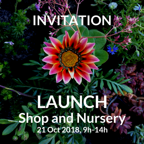 LAUNCH: Our Gardens (Cape Town) Nursery