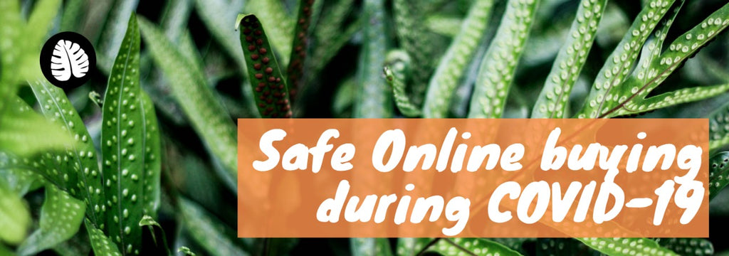 COVID-19: Safe Online Shopping Guide