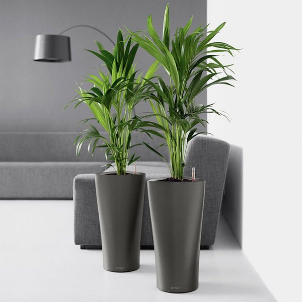 Artevasi Self-Watering Planter