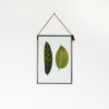 VELT Botanical Frame - Mixed Foliage