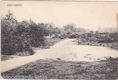 SHEEN COMMON, SURREY (SHOWING POND?) - OLD POSTCARD (ref 3492)