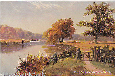 THE WEY NEAR SHALFORD, SURREY - OLD HILDESHEIMER ART POSTCARD (ref 2298/15)