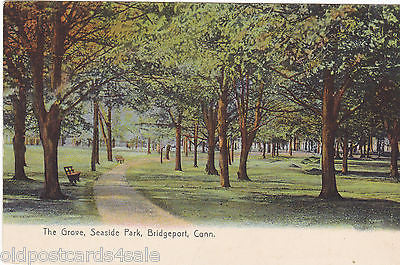 THE GROVE, SEASIDE PARK, BRIDGEPORT, CONN., OLD POSTCARD (ref 4814)