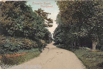 CRUMLIN ROAD, PONTYPOOL - EARLY 1900s POSTCARD (ref 5298)