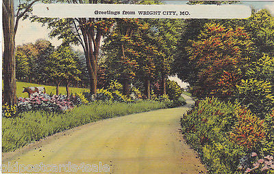 GREETINGS FROM WRIGHT CITY, MO. - OLD POSTCARD (ref 5651/13)