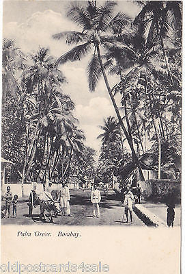 PALM GROVE, BOMBAY - OLD POSTCARD (ref 2107)