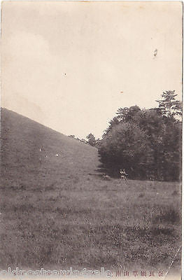 SOUTH FOOT OF KASUGA MT, NARA - PHOTO POSTCARD - JAPAN - (ref 5605/13)