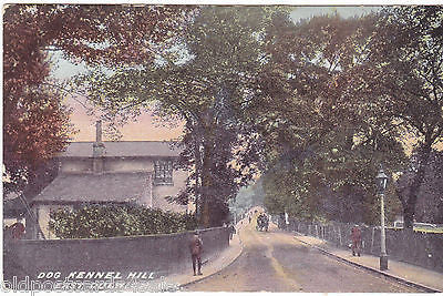 DOG KENNEL HILL, EAST DULWICH - PRE 1918 POSTCARD (ref 4330/15)