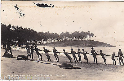HAULING THE NET, SOUTH COAST, CEYLON - REAL PHOTO POSTCARD (ref 5797/13)