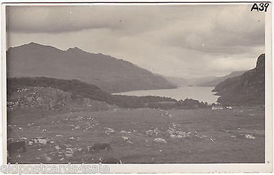 LOCH MAREE - WESTER ROSS - REAL PHOTO POSTCARD (ref 1761)
