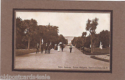 PALM AVENUE, SUTRO HEIGHTS, SAN FRANCISCO - EMBOSSED POSTCARD (ref 5629/13)
