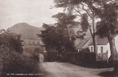 ON THE CORRIEGILLS ROAD, BRODICK - ISLE OF ARRAN - OLD POSTCARD (ref 3239/19)