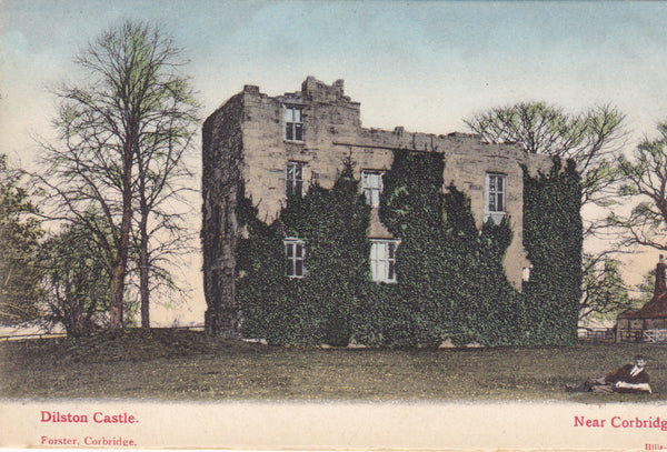 Old postcard of Dilston Castle, nr Corbridge, Northumberland