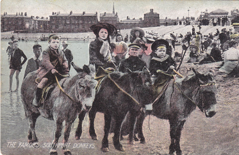 The Famous Southport Donkeys