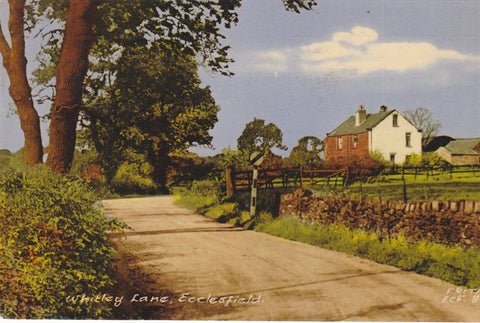 Whitley Lane, Ecclesfield, old Yorkshire postcard