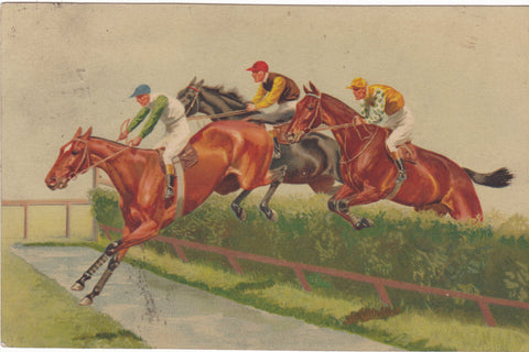 horse racing over jumps