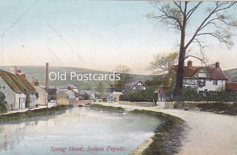 SPRUG HEAD, SUTTON POYNTZ - CANAL - OLD DORSET POSTCARD